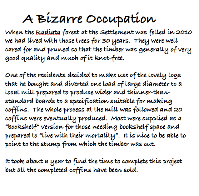 A bizarre Occ. 2013-03-03 at 1.39.12 PM